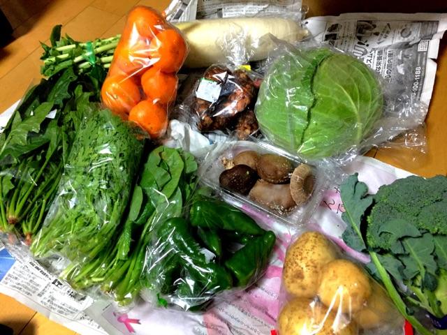 ふるさと納税で野菜